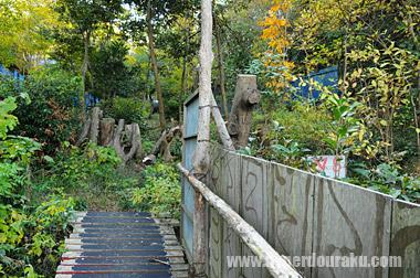 バンブー ジャングル